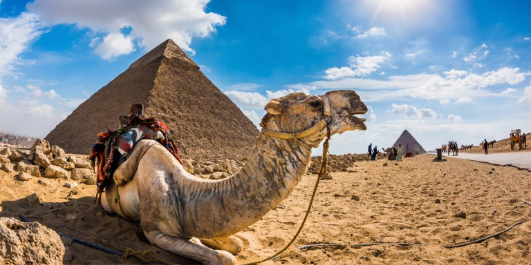 holiday in Egypt