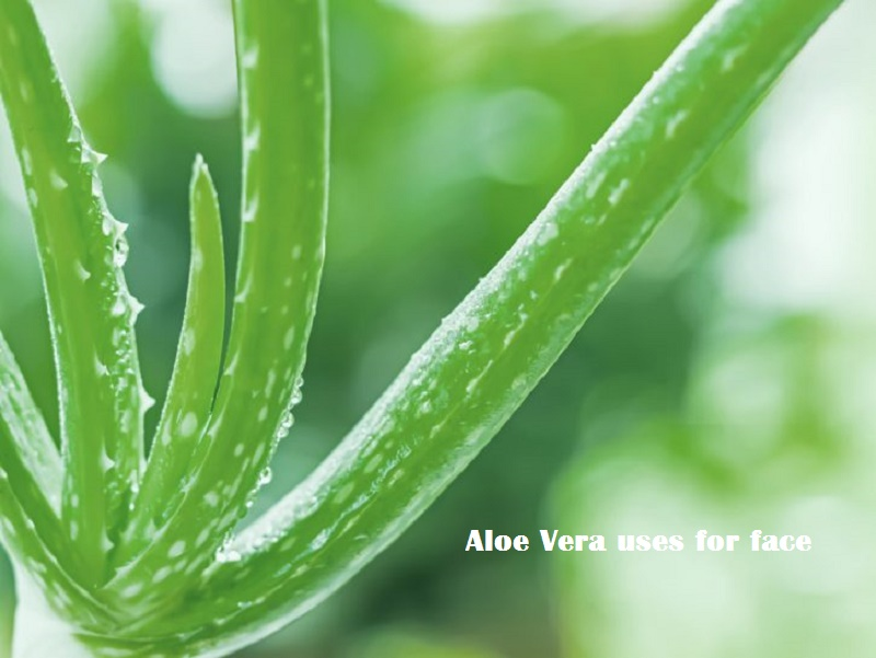 aloe vera uses for face