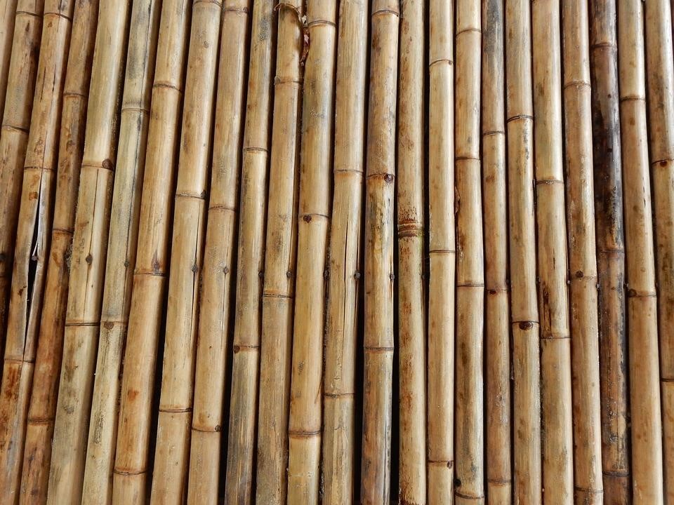 Use a great building material like bamboo