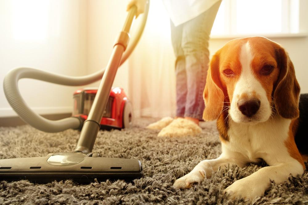 How to Repair A Vacuum Cleaner: Fix It Quick!