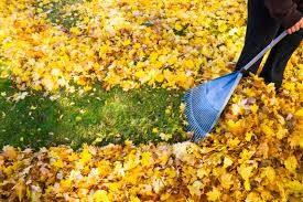 Winter Garden Jobs that you can Do