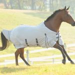 Fly Sheets For A Horse
