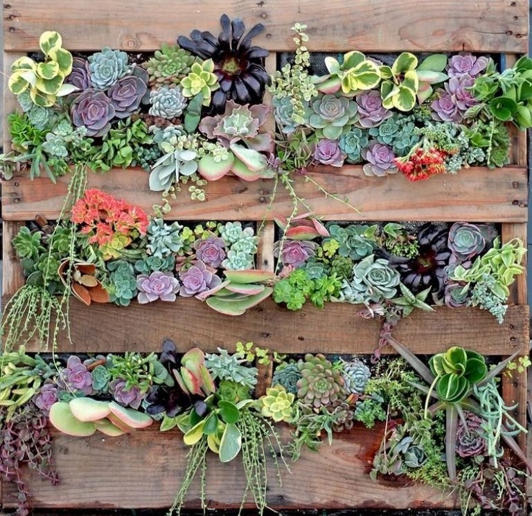 How to make a home vertical garden to decorate small terraces? (STEP BY STEP)