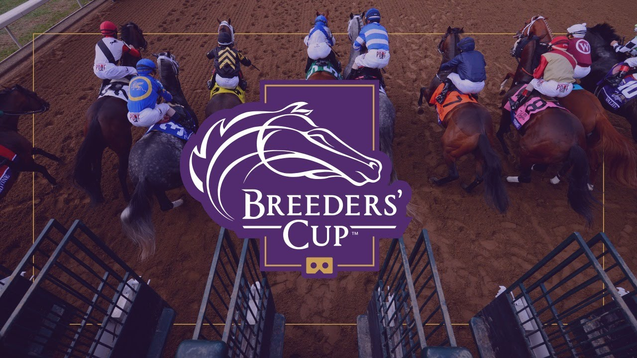 Outside Bets for the Breeders' Cup Classic 2021